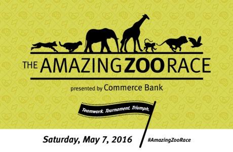 the amazing zoo race 2016